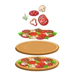 Ingredients for cooking pizza icon food vector