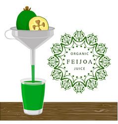 the theme feijoa vector image