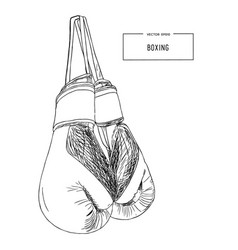 vintage boxing gloves hanging sketch vector image