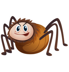 Wild spider on white background vector