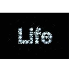 Diamond word life vector image vector image