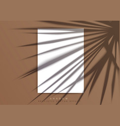 A4 paper mockup a transparent shadow palm leaf vector