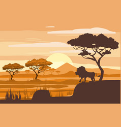 African landscape lion savannah sunset vector