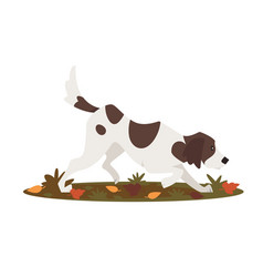 cute dog hunting vector image