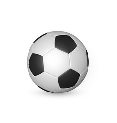 football ball soccer ball isolated on white vector image
