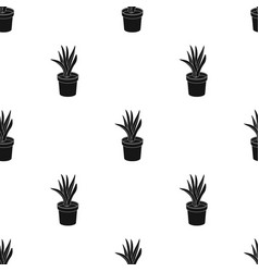 Office plant in th flowerpot icon in black style vector