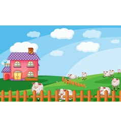 Sheeps vector