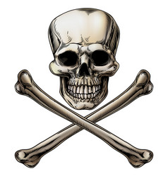 Jolly roger skull and crossbones sign vector