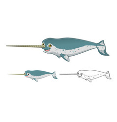Narwhal vector image