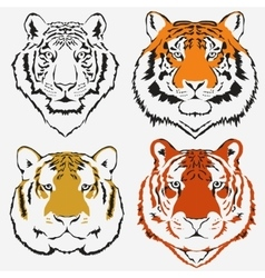 Tiger logo set vector