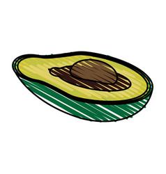 Color crayon stripe slice avocado fruit food vector