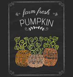 pumkins doodle on the black board vector image