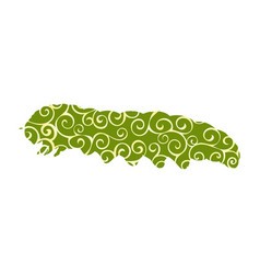 caterpillar insect spiral pattern color silhouette vector image