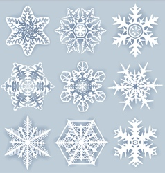 Crystal snowflakes vector image