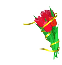 Red tulips with yellow ribbon are on white vector image