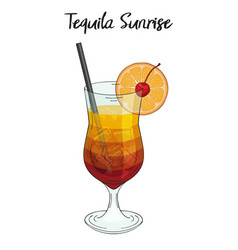Tequila sunrise cocktail with orange decorations vector