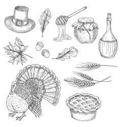 Thanksgiving sketch design symbols icons vector image