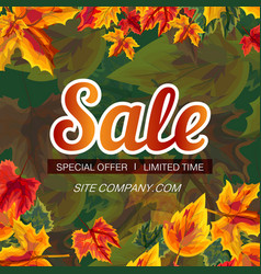 vivid banner with autumn sale promo vector image