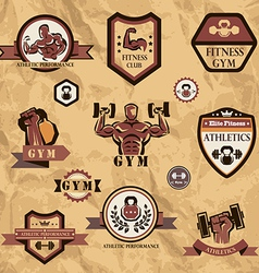 gym fitness emblems collection vector image vector image