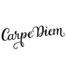carpe diem calligraphy script vector image