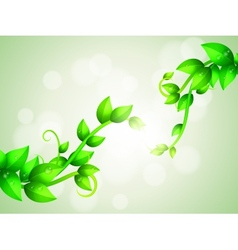 Green Branches Background vector image
