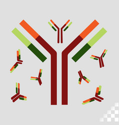 immune system antibody or drug for fight off vector image