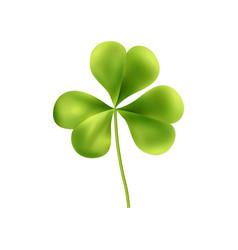 Irish clover leaf composition vector