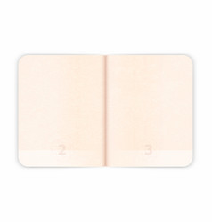 Passport blank pages for visa stamps empty vector