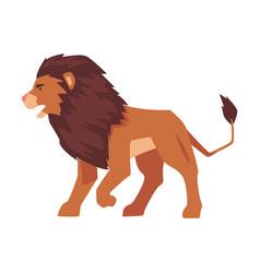 Proud powerful lion safari mammal jungle animal vector