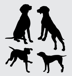 vizsla dog action silhouette vector image