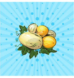 a few ripe melons on a blue background vector image