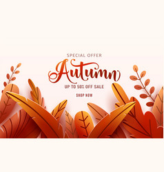Autumn sale background fall frame and text vector