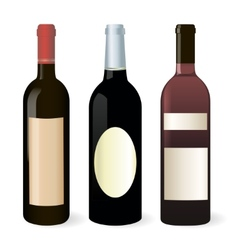 Bottles of wine set vector