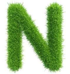 Capital letter n from grass on white vector