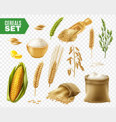 Cereals transparent icon set vector
