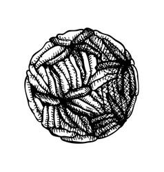 Hand drawn virus biology organisms sketch in vector