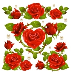 Red Rose design elements vector