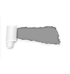 Ripped hole in white sheet of paper vector