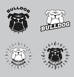 set logo bulldog head vector image vector image