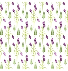 Wild flower purple plant spring field seamless vector image vector image
