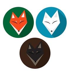 Red Fox Arctic Fox Brown Fox vector image