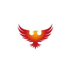 creative pheonix logo design symbol vector image
