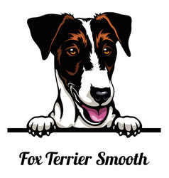 Head fox terrier smooth - dog breed color image vector