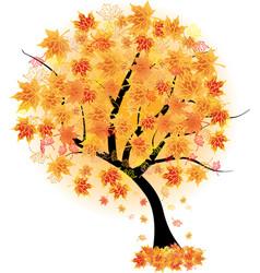 autumn maple tree vector image vector image