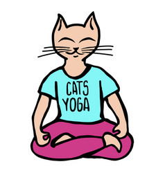 cats yoga vector image