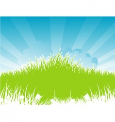 summer back grass vector image vector image