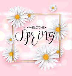 pink spring background with realistic chamomile vector image
