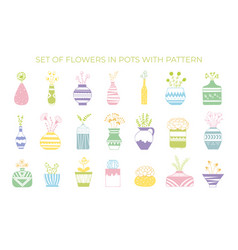 a set flowers in pots with a pattern vector image