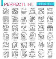 beauty spa cosmetic concept symbols perfect thin vector image