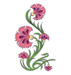 Carnations drawing vector